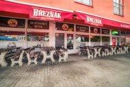 Restaurace Slatinský Šejk